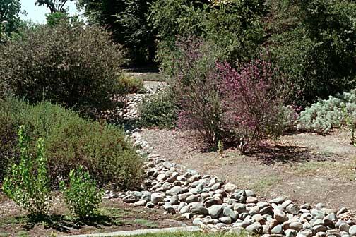Rocks in Landscape Image