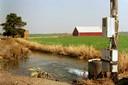 Irrigation of Field