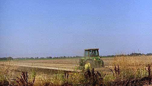 Tractor in Yolo County Field