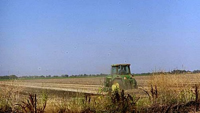 Tractor in Yolo County Field